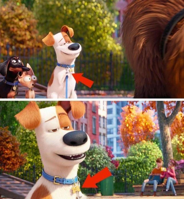 Кадр из мультфильма «Тайная жизнь домашних животных»