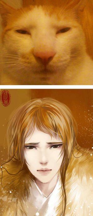 Хуманизация кота