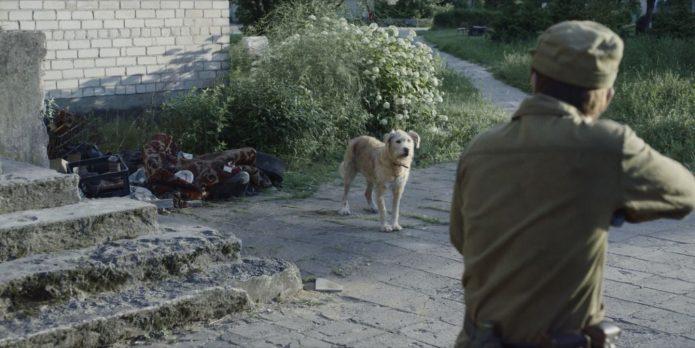 Солдат целится в собаку