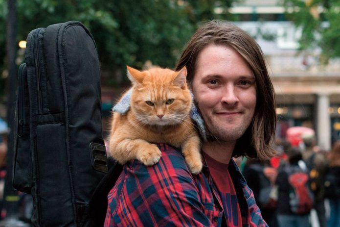 «Уличный кот по имени Боб»